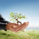 Sustainable Abundance