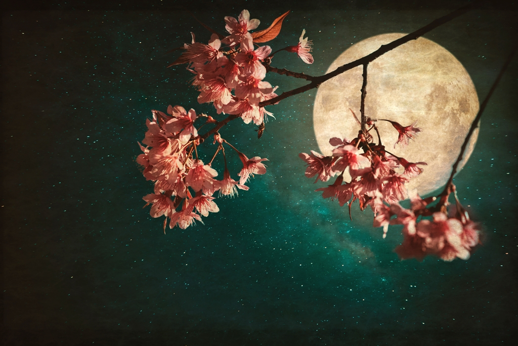Spring Equinox and Full Supermoon